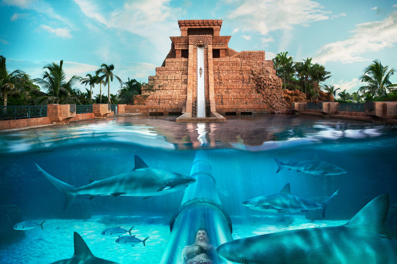 mayan_temple_1410_standard